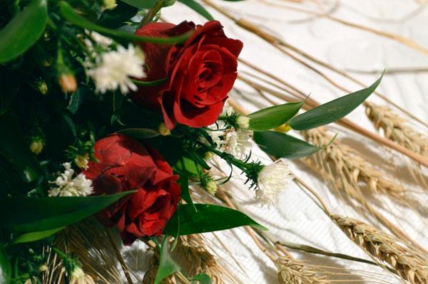 fiori bellezza